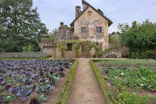 staré stavení, záhony, saláty
